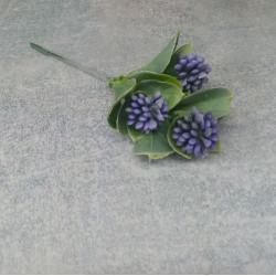 Ветка клевера фиолетовый
