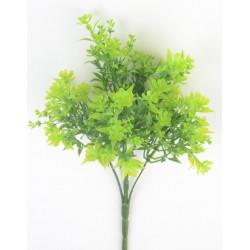 Букет зелени незабудки, зеленый