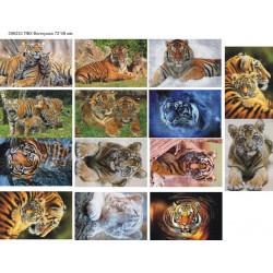 Картинки на водорастворимой бумаге 2021 Тигры фото