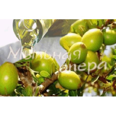 Базовое масло жидкое Арганы девственное