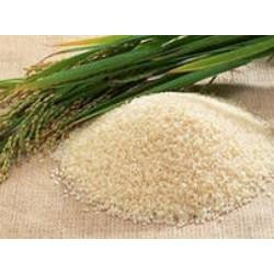Базовое масло жидкое Рисовых отрубей