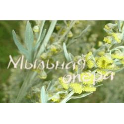 Эфирное масло Полынь лимонная