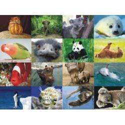 Картинки на водорастворимой бумаге Животные 1