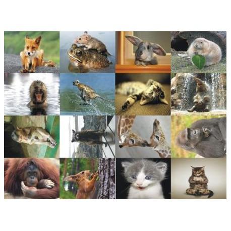 Картинки на водорастворимой бумаге Животные 2