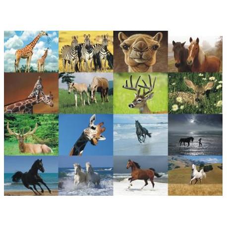 Картинки на водорастворимой бумаге Лошади