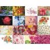 Картинки на водорастворимой бумаге Цветы 3