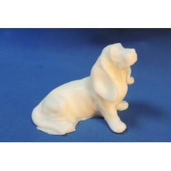 3D Собака Бассет