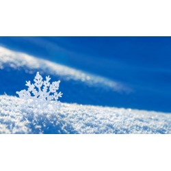 Отдушка Аромат снега