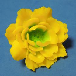 Форма 3D Древовидный пион