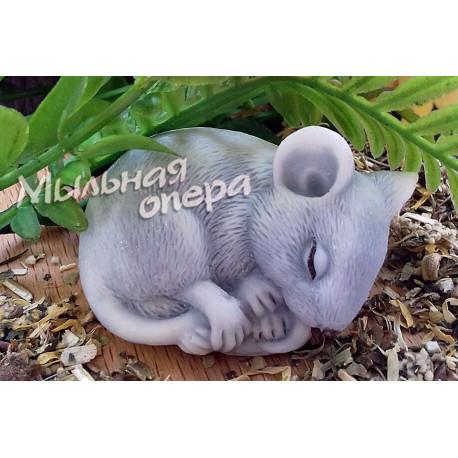 Форма 3D Мышка калачиком