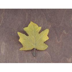 Лист клена осенний