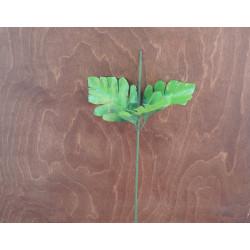 Стебель с листом хризантемы