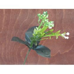Ветка зелени мелкоцвет с ягодами