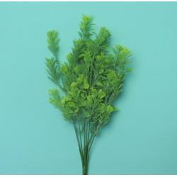 Букет брусничника светло-зеленый