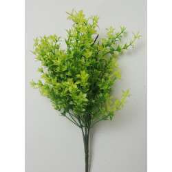 Букет водоросли Комбинированный